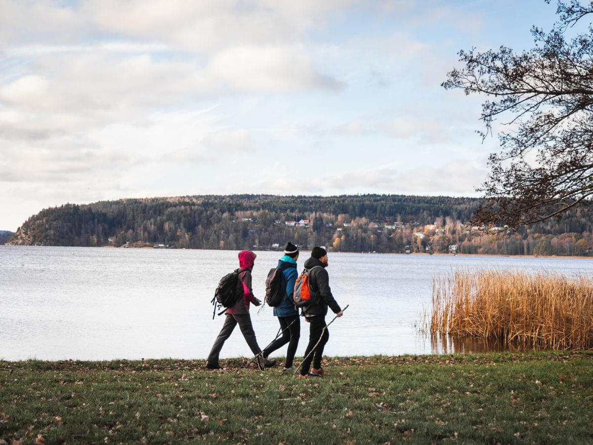 Tre vandrare vid en sjö