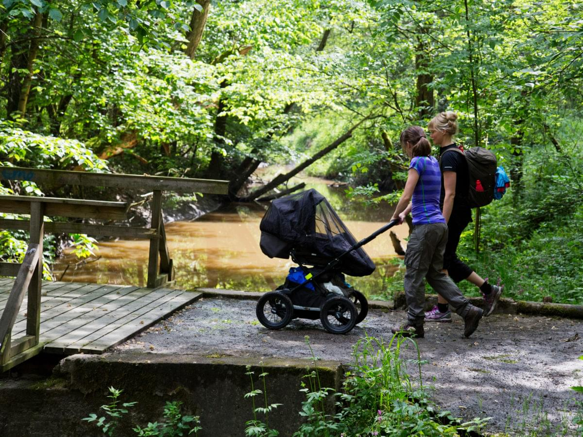 Go on a hike with your stroller