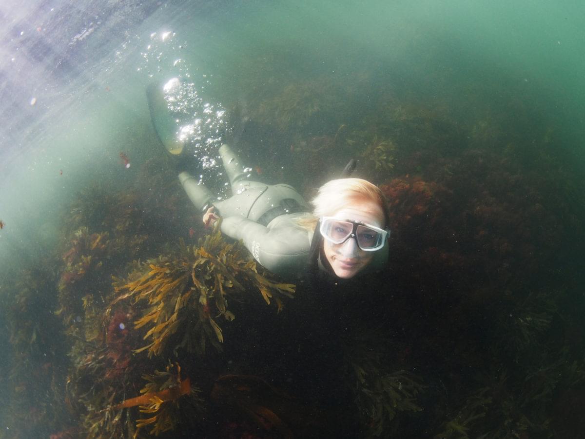 Snorkelling in Hummerviken
