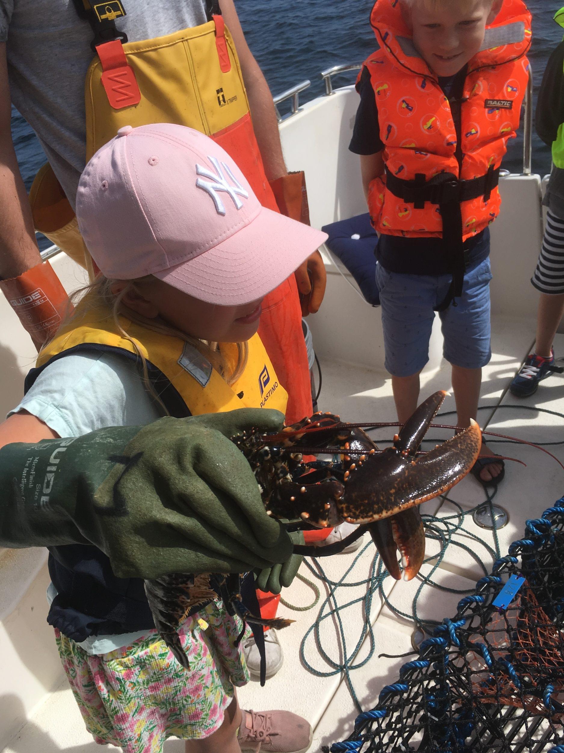 Lobstersafari